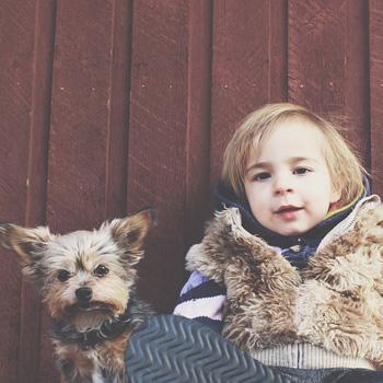 Pertolongan Pertama Anak Terluka Akibat Gigitan Anjing Peliharaan